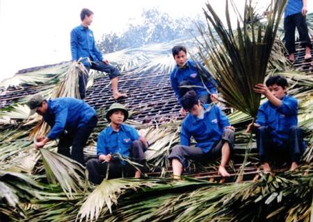 Youth volunteer activities in Quang Ninh - ảnh 1
