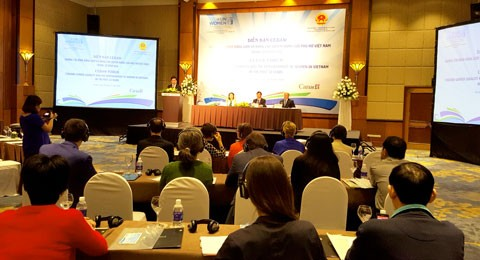 Vietnam commits to promoting gender equality in line with CEDAW - ảnh 1