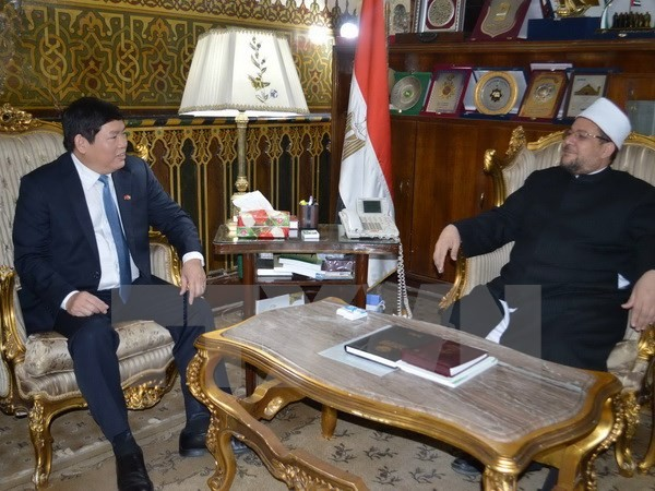 Government committee for religious affairs delegation visits Egypt - ảnh 1