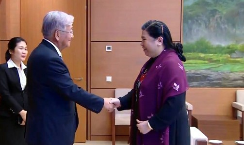 越南国会副主席丛氏放会见世界卫生组织西太平洋地区办公室主任申英秀 - ảnh 1
