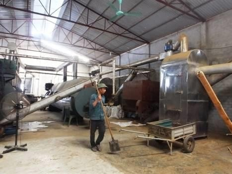 越南最大鱼粉生产厂投入活动 - ảnh 1