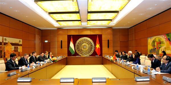 大力推动越南和匈牙利传统友好与各方面合作关系 - ảnh 1