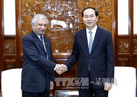 陈大光会见联合国常驻越南协调员兼联合国开发计划署驻越首席代表 - ảnh 1