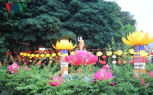 越南多个地方举行举行佛历2561年佛诞大典活动 - ảnh 1