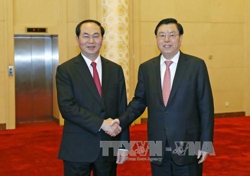 陈大光会见中国全国人大常委会委员长张德江 - ảnh 1