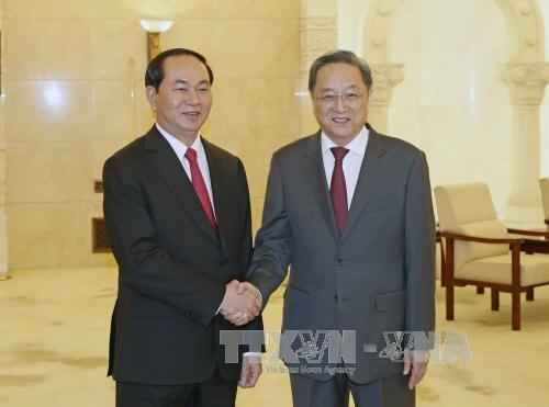 陈大光会见中国全国政协主席俞正声 - ảnh 1