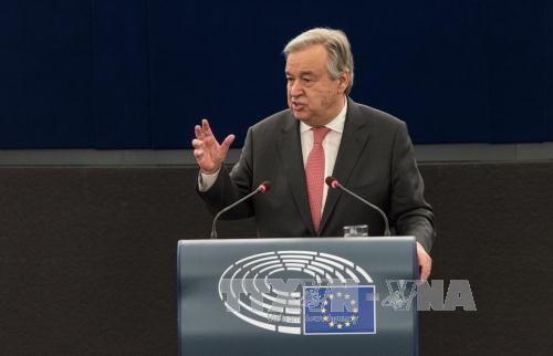 联合国敦促解决海湾危机 - ảnh 1