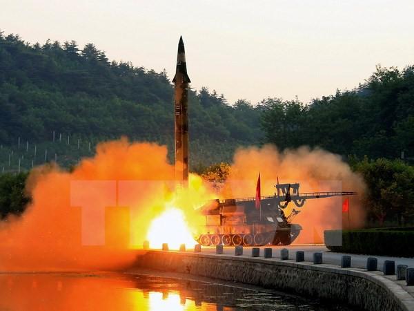 朝鲜射导:日本和俄罗斯承诺遵守联合国制裁决议 - ảnh 1