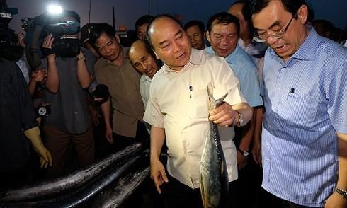 응웬 쑤언 푹 (Nguyen Xuan Phuc)총리, Hue와 Quang Tri에 환경 사고 후 여파 극복, 생산 회복 점검 - ảnh 1