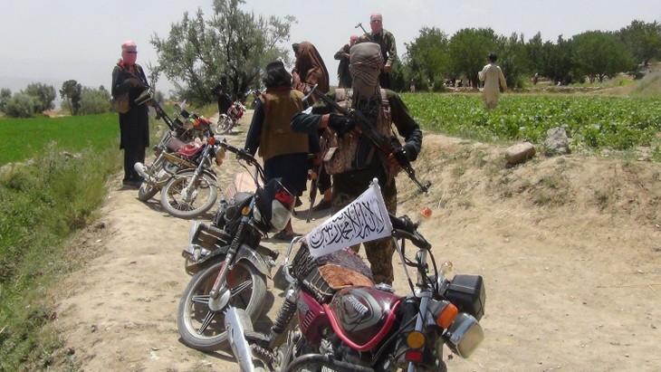 Afghanistan: talibans et EI accusés du massacre de 50 civils - ảnh 1