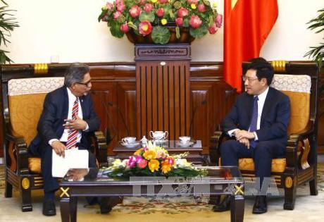Pham Binh Minh reçoit le vice-ministre salvadorien des Affaires étrangères - ảnh 1