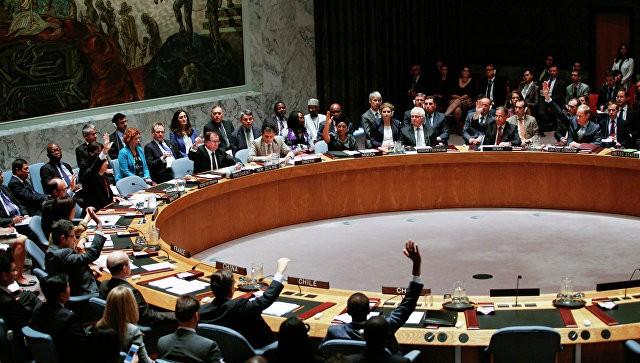 Совбез ООН опроверг проекты резолюций Франции и России по Сирии - ảnh 1