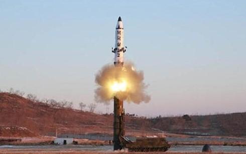 Китай и Россия обязались поддерживать тесное взаимодействие по проблеме Корейского полуострова  - ảnh 1