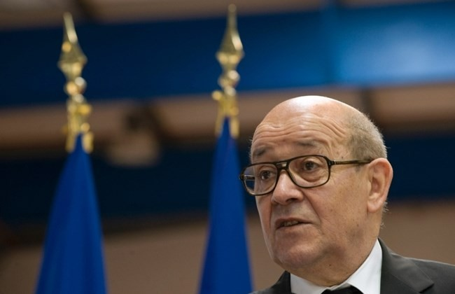 French defense minister in Iraq for talks on anti-IS war - ảnh 1