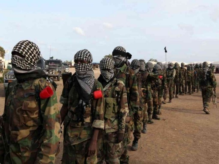 US airstrikes kill 12 Al-Shabab militants in Somalia - ảnh 1