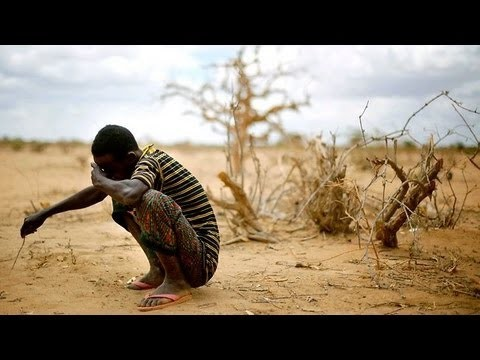 UN call for emergency food supply to Somalis - ảnh 1