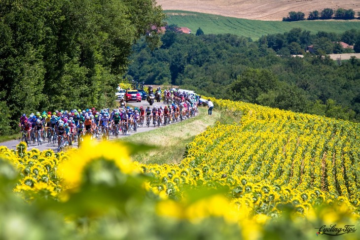 Tour de France - the world's most famous bicycle race - ảnh 4
