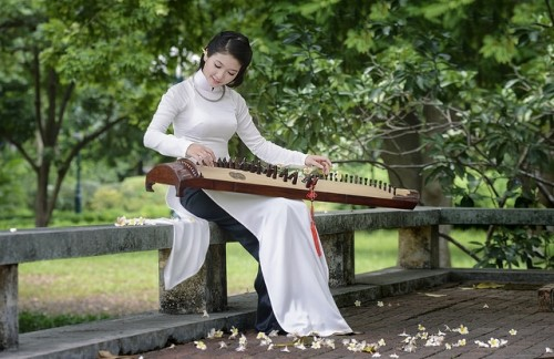The 16-String Zither - Traditional Vietnamese Musical Instrument - ảnh 3