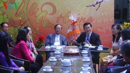 Президент Вьетнама поздравил жителей г.Хошимина с Тэтом - ảnh 3