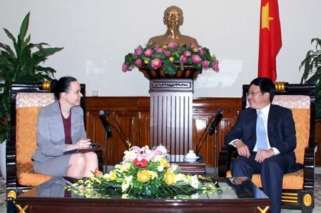 Вице-премьер, министр иностранных дел Вьетнама принял послов зарубежных стран - ảnh 1