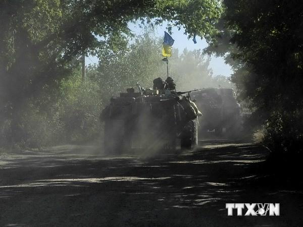Украина не будет осуществлять «массированную бомбардировку населенных пунктов» - ảnh 1