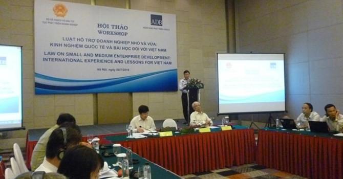Содействие малым и средним предприятиям - международный опыт и урок для Вьетнама - ảnh 1