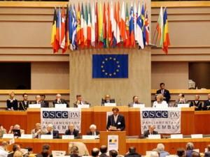 Россия попросила созвать экстренное заседание Постоянного совета ОБСЕ по Украине - ảnh 1