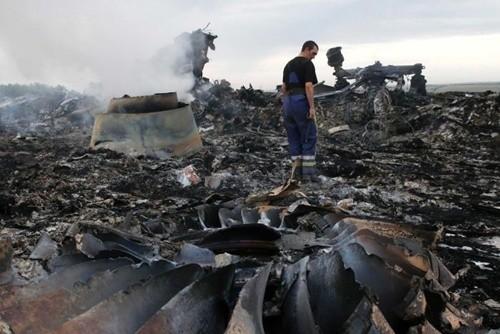Руководители Вьетнама выразили соболезнования в связи с крушением малайзийского самолета - ảnh 1