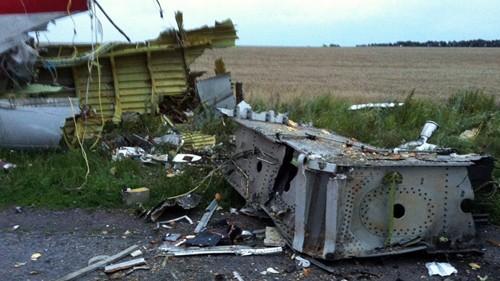 Малайзийский самолет упал на востоке Украины - ảnh 2