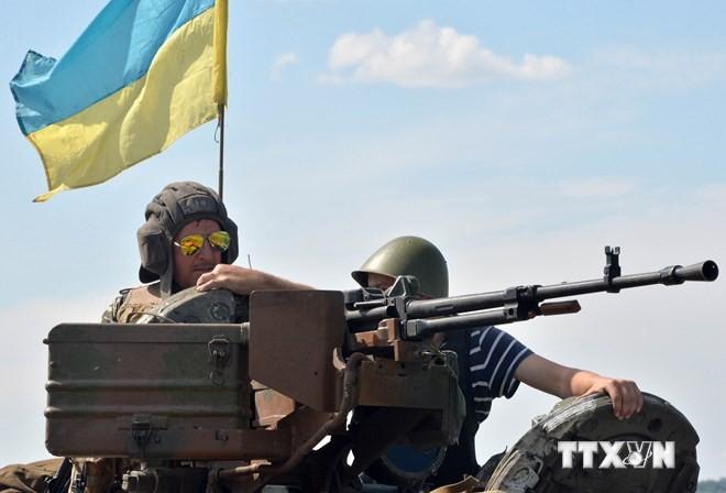 Вьетнам желает, чтобы стороны на Украине нашли мирный способ урегулирования конфликта - ảnh 1