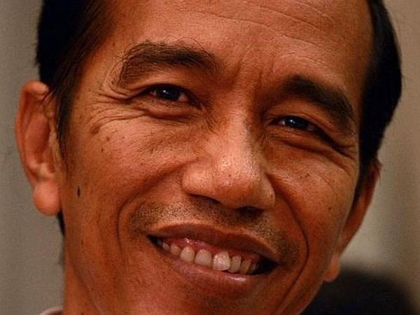 США хотят активизировать отношения с новым правительством Индонезии - ảnh 1