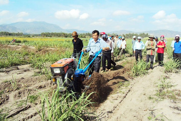 Строительство новой деревни в провинции Жалай: обновление старого фундамента - ảnh 3