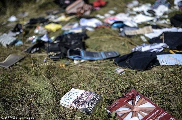 Нидерланды получили личные вещи погибших пассажиров рейса MH17 - ảnh 1