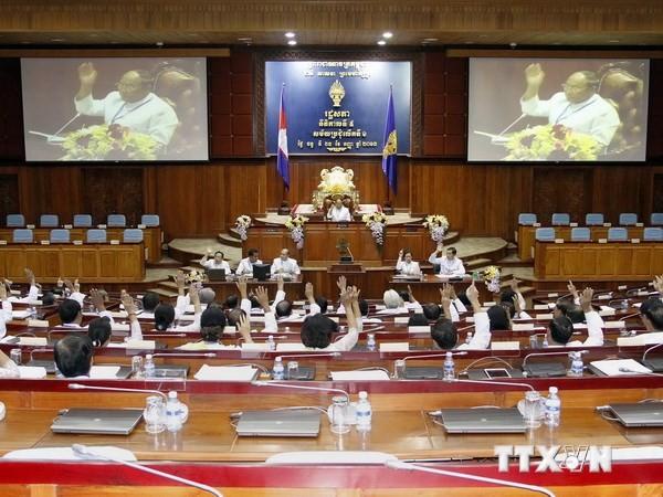 Парламент Камбоджи готовится к завершению совершенствования руководства - ảnh 1