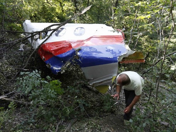 Данные черных ящиков самолета рейса МH17 переданы нидерландским следователям - ảnh 1