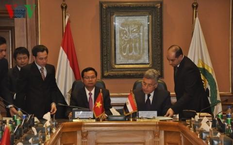 Генеральный инспектор вьетнамского правительства встретился с премьером Египта - ảnh 2