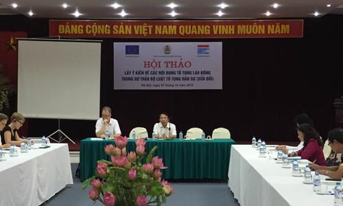 Во Вьетнаме собраны мнения по проекту исправленного Гражданского процессуального кодекса - ảnh 1