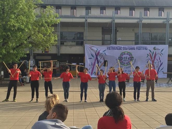 В Канбере состоялся Фестиваль вьетнамской культуры - ảnh 1