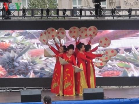 Открылись Дни вьетнамской культуры в чешском городе Брно - ảnh 1