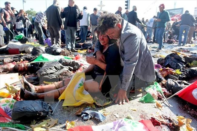 Вьетнам резко осуждает теракт в Турции - ảnh 1