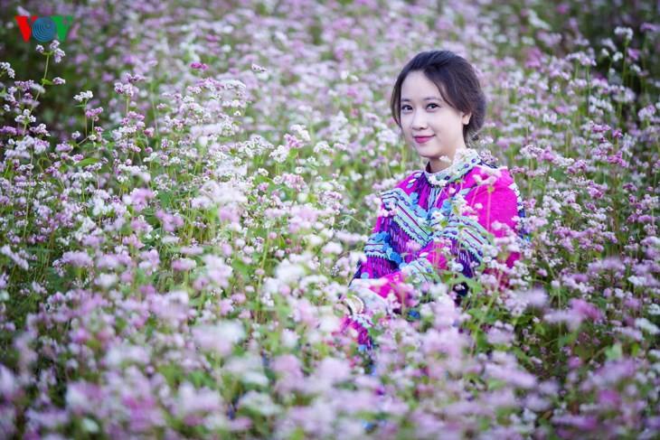 Красота цветков гречихи в горных районах Вьетнама - ảnh 10