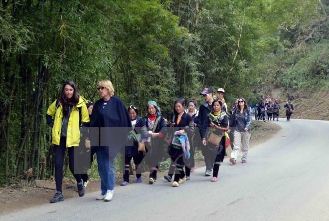 Количество туристов, посетивших Шапу во время новогоднего праздника, выросло на 45% - ảnh 1