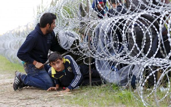 Каковы меры по разрешению миграционного кризиса? - ảnh 1