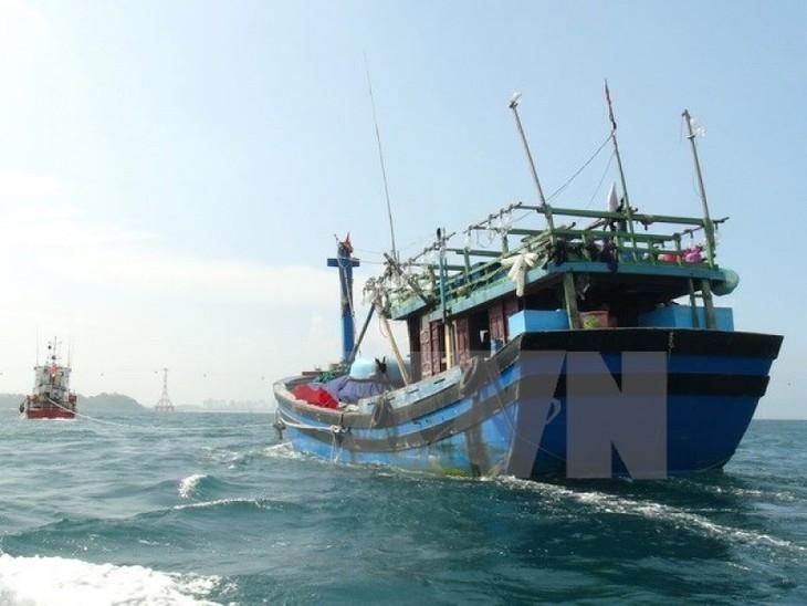 МИД СРВ осудило затопление рыболовецкого судна провинции Биньдинь - ảnh 1