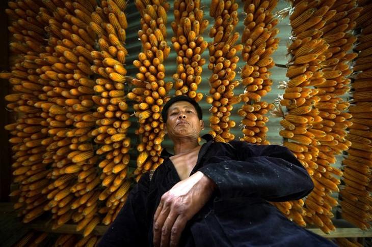 Прекрасные фотографии Вьетнама, снятые Реханом - ảnh 6