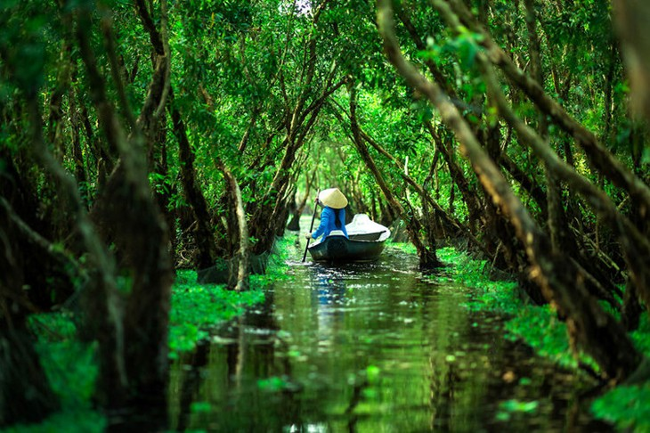 Прекрасные фотографии Вьетнама, снятые Реханом - ảnh 10