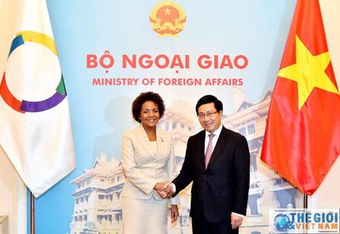 Фам Бинь Минь провёл переговоры с генсекретарём Международной организации франкофонии  - ảnh 1