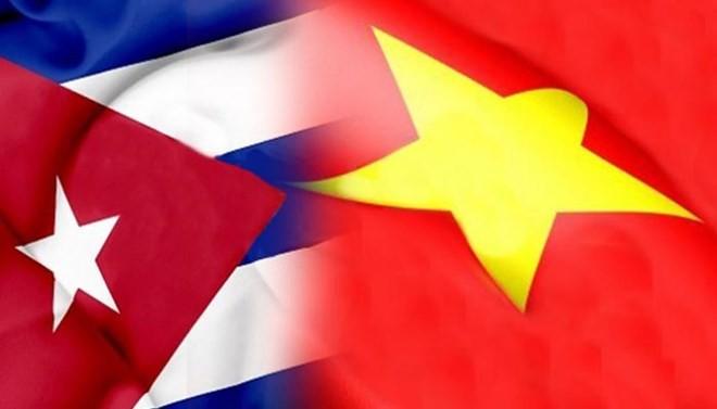 Вьетнам укрепляет солидарность с кубинским народом - ảnh 1