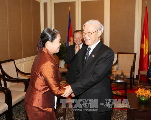 Укрепление и устойчивое развитие солидарности и дружбы между Вьетнамом и Камбоджей - ảnh 1