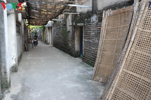 Промысел по производству вермишели в деревне Кыда - ảnh 4